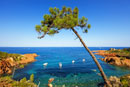 Discovery of frejus / saint-aygulf on the french riviera Var